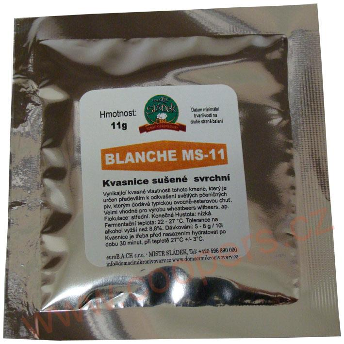 BLANCHE MS-11